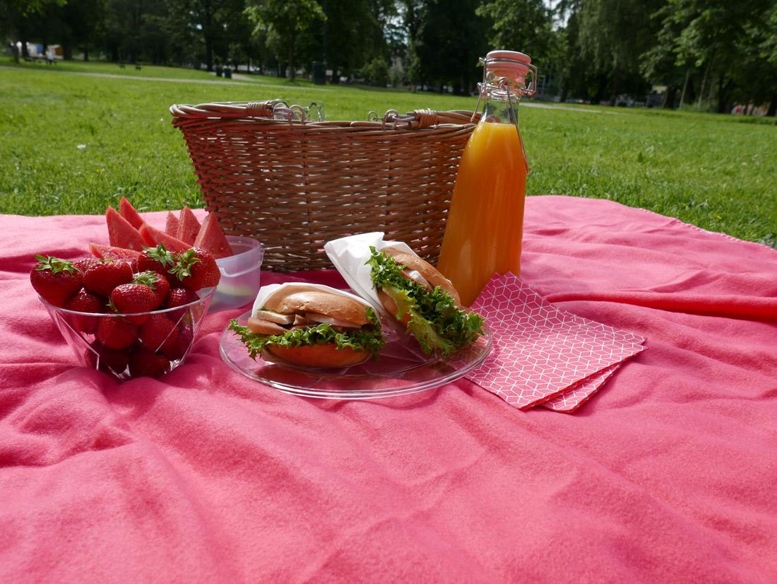 piknik_mat
